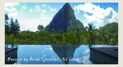Infinity Pool At Boucan Hotel Chocolat, St Lucia - food and wine holidays