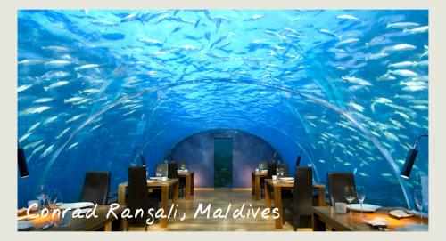Underwater Restaurant At Conrad Rangali, Maldives - food and wine holidays