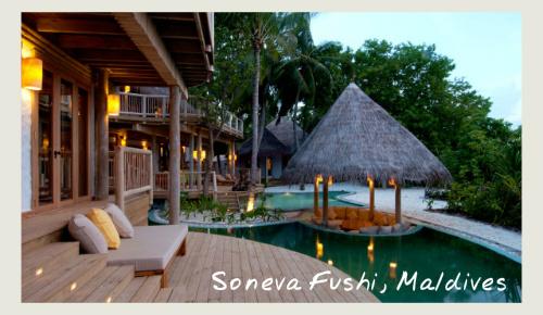 The Pool At Soneva Fushi,Maldives - food and wine holidays