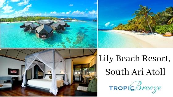 Lily Beach Resort, Maldives