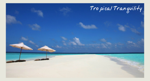 Beautiful beach - Soneva Fushi Wellness Programmes