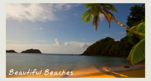 beach - eco holidays in tobago