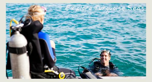 diving - eco holidays in tobago