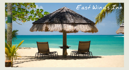east winds inn - caribbean holiday offers