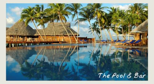 maldives honeymoon at vilu reef, pool and bar