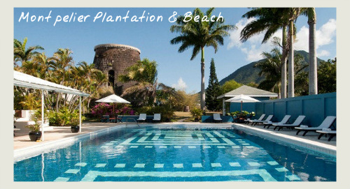 Montpelier Plantation - St Kitts and Nevis holiday offers