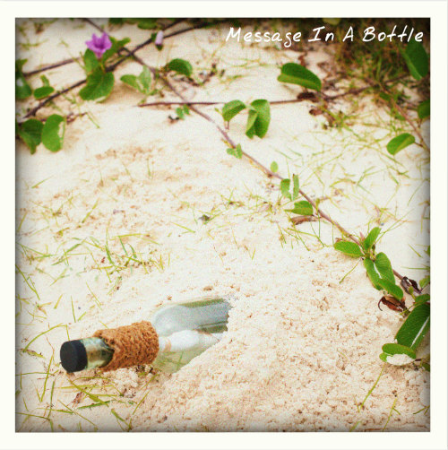 Message in a bottle - LUX Maldives