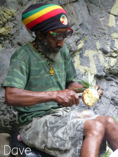 Dave Jamaica2
