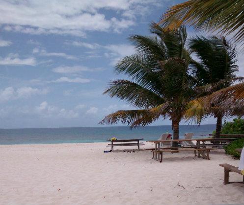 Beach Sandy Island