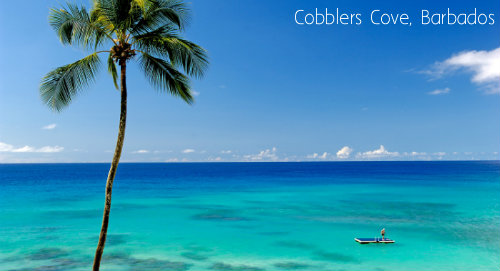 2Cobblers Cove Cover