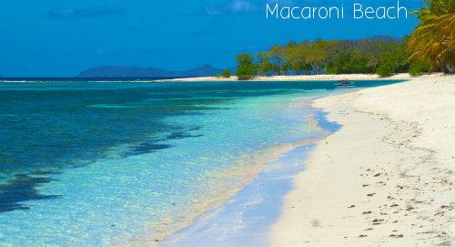Macaroni Beach Blog