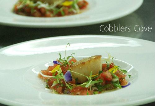 cobblers-cove-scallops