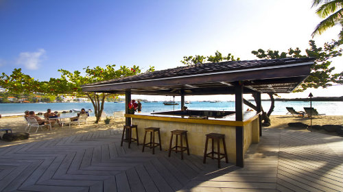 Calabash Focus - Beach Bar - TB 500