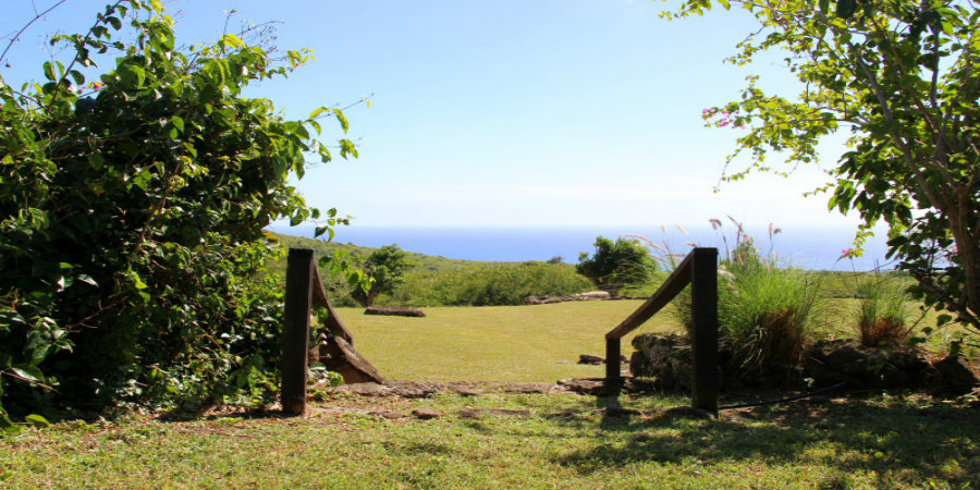 montpelier-plantation-and-beach-natural-beauty-900450