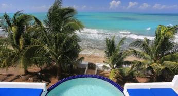 Amazing views over the palms on the hope house terrace at Jakes, Jamaica