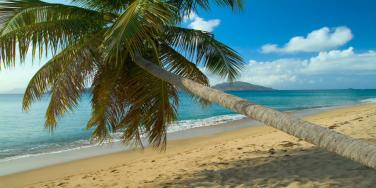 Montpelier Plantation and Beach, Nevis